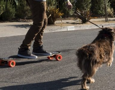 best longboard for dog pulling