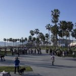 Longboarding In Los Angeles: Where to Longboard Skate In The City Of Angels